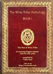 Write Tribe Anthology
